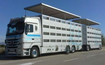 Normas, reglamentos y algo más para los camiones ganaderos